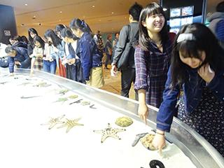 美ら海水族館につきました。
