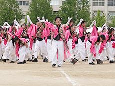 ピンク団応援合戦